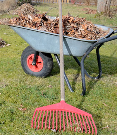 Landscape Seasonal Clean-Ups Spring and Fall Syracuse, North Syracuse, Cicero, & Oswego